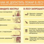 безопасность в лесу